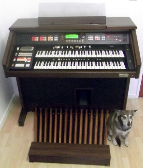 hammond orgel club holland u203a hammond xt xh 200 rh hammondclub nl